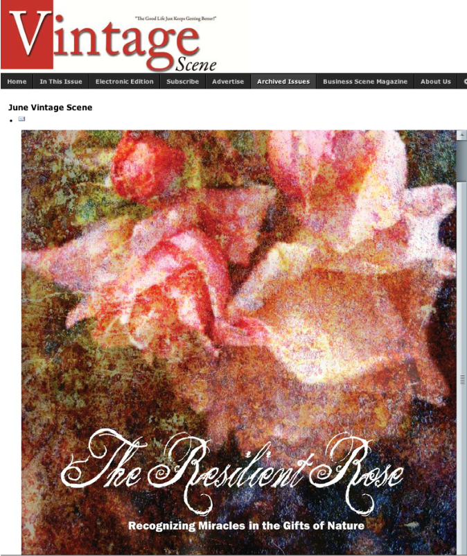 Featured Article in Vintage Scene Magazine